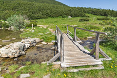 Landscape with wooden bridge over river in Pirin Mountain near Bezbog lake Royalty Free Stock Images