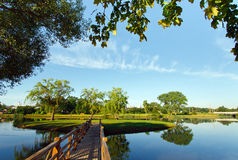Landscape with wooden bridge Stock Photo