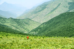 Landscape of Wutaishan. The landscape of east mountain in Wutaishan in Shanxi province in China Stock Image