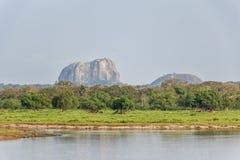 Landscape Yala National Park, Sri Lanka Stock Photos