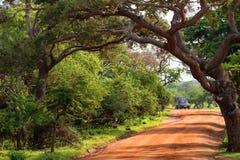Landscape of Yala National Park, Sri Lanka Stock Images