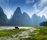 Landscape in Yangshuo Guilin Stock Image