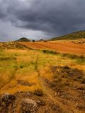 Landscape with yellow colours. Under sky threatening storm royalty free stock photo