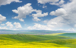 Landscape of yellow - green fields on the hills,  blue sky with Stock Image