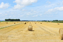 Landscape with yellow haystack rolls on field. Landscape with yellow haystack rolls on harvested field in Normandy, France royalty free stock images