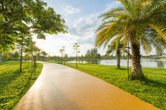 Landscape with yellow jogging track at green park Royalty Free Stock Photos