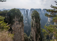 Landscape of Yuanjiajie, Zhangjiajie National Forest Park, Royalty Free Stock Photo