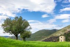 Landscape of zante island Stock Photos