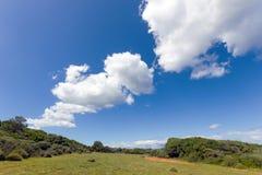 Landscape of zante island Royalty Free Stock Photos