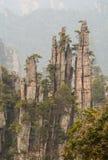 Landscape of of Zhangjiajie Royalty Free Stock Photography