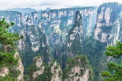 Landscape of Zhangjiajie National Forest Park, UNESCO World Heri royalty free stock image