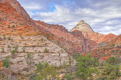 Landscape Zion National Park Stock Photo