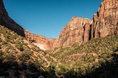 Landscape in Zion National Park. Landscape with rock formations in Zion National Park, Utah, USA Stock Images