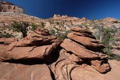 Landscape in Zion National Park. Landscape with rock formations in Zion National Park, Utah, USA Stock Photo