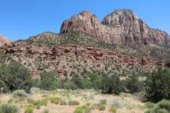 Landscape in Zion National Park. Utah. USA Stock Image