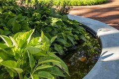 landscaped сад цветка Стоковая Фотография
