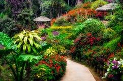 Landscaped цветастый и мирный сад цветка в цветении Стоковая Фотография RF