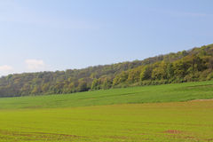 Landscaped field Royalty Free Stock Photos
