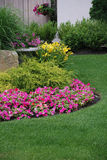 Landscaped flower garden. Landscaped garden with flowers and shrubs Stock Image