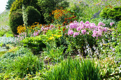 Landscaped flower garden royalty free stock photography