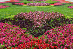 Landscaped flower garden. Royalty Free Stock Image