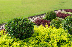 Landscaped Formal Garden. Stock Image