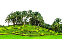 Landscaped garden at Chiang Mai Royal Park Royalty Free Stock Images