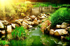Landscaped Garden with Pond Stock Image