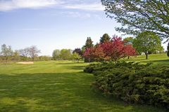 Landscaped Golf Course. Looking down the landscaped fairway on this Wisconsin golf course. Dogwood trees in bloom Stock Image