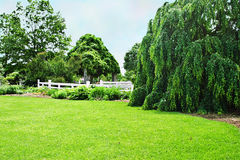 Landscaped park. Beautifully landscaped park against a blue sky Royalty Free Stock Image