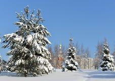 Landscaped parkerar efter tungt snöfall Gran-träd i snö mot bakgrund av kyrkan Fotografering för Bildbyråer