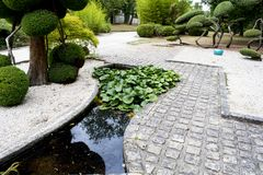 Landscaped path, made by a landscaper. A path made of stones, shrubs, black bamboo and a small pond with water lilies to go to the greenhouse of the garden Royalty Free Stock Photo