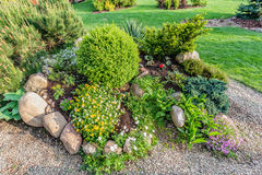 Landscaped summer garden with green plants, rocks, flowers in flowerbeds, mown grass. Royalty Free Stock Image