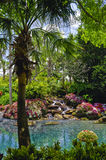 Landscaped tropical garden Stock Photos