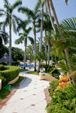 Landscaped tropical villa. Pathway receding though palm trees in landscaped tropical villa, swimming pool in background royalty free stock images