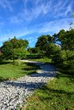 Landscapein Alishan Taiwan Imagem de Stock