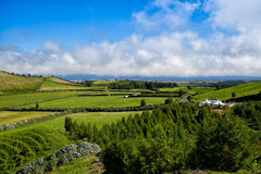 The landscapen on Sao Miguel Stock Images
