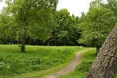Landscapepicnic Bereich des Parksommers, Wege, Fluss lizenzfreies stockbild