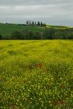 Landscaper της Τοσκάνης αγροτικός πράσινος μπλε κίτρινος της Ιταλίας επαρχίας πορειών Στοκ φωτογραφία με δικαίωμα ελεύθερης χρήσης