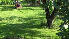 Landscaperman som mejar gräs mellan blommor och fruktträd i trädgårds- gård 4K
