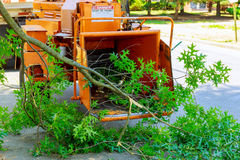 Landscapers using chipper machine to remove and haul chainsaw royalty free stock photos
