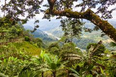 Landscapes of the Andean Choco region. In northwestern Ecuador Royalty Free Stock Image