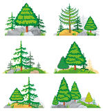 Landscapes with coniferous trees, grass and stones. Vector set Stock Photos