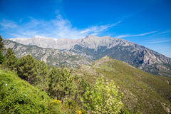 Landscapes of Corsica Stock Image