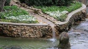 Landscapes design in Arboretum stock video footage