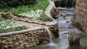 Landscapes design in Dallas Arboretum TX stock footage