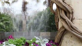 Landscapes design in Dallas Arboretum stock video footage