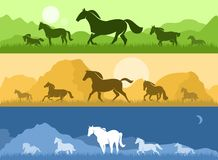 Landscapes with horses Royalty Free Stock Photo