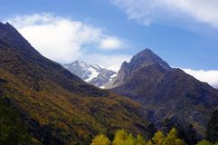 Landscapes of mountains of golden autumn Stock Photos