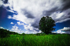 Landscapes. Of one beautifull place in Croatia, Hrvatsko Zagorje, green, time, color Royalty Free Stock Photos